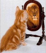 Тест – насколько вы уверены в себе